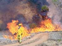 p2128-backburning