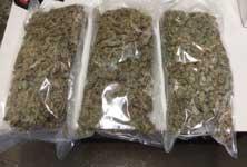 p2129-cannabisSM