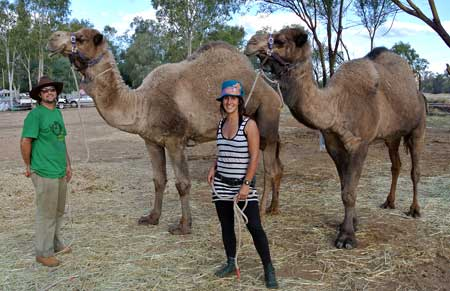 p2132-Swags-&-camels-2