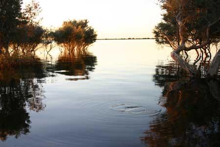 p2143-Groundrush-Lake-Ruth
