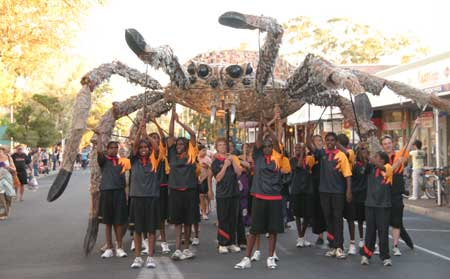 p2214-Yirara-spider