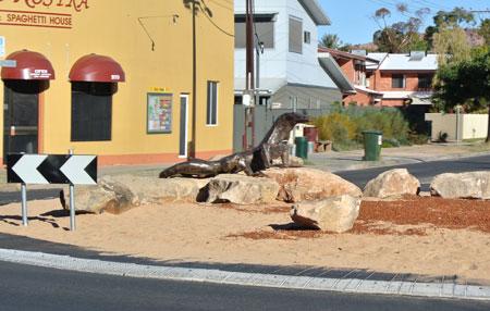 p2253-Lizard-roundabout-2