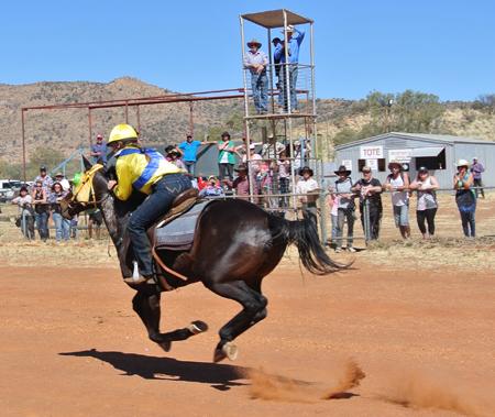 p2262-Harts-races-1
