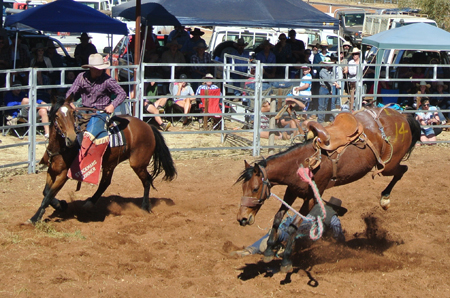 p2262-Harts-rodeo-2