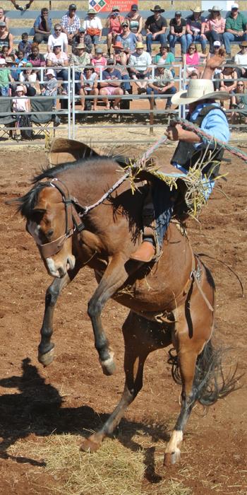 p2262-Harts-rodeo-5