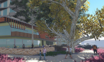p2274-Melanka-trees-3SM