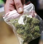 p2304-cannabis-SM
