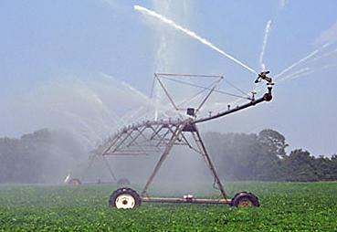p2314-spray-irrigation