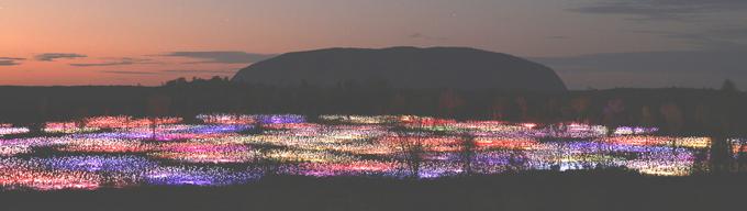 p2317-Field-Light-Uluru-2