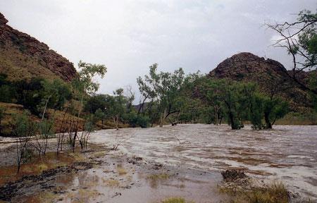 p2325-Nelson-flood-pic-6