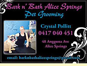 2337 pet grooming