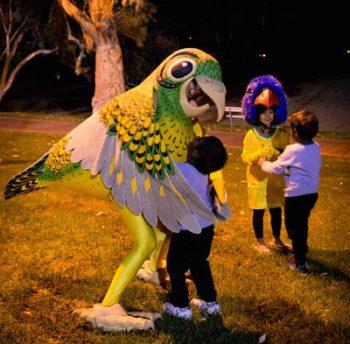 p2341-SS-Fest-parrots