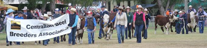 p2337-Show-2016-cattlemen-5