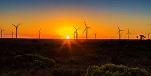 p2340-wind-turbines-SM