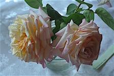 p2354-flower-show-1-sm