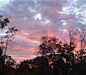 p2355-sunset-sm