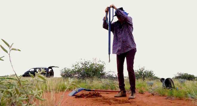 p2361 Termite Fiona crowbar