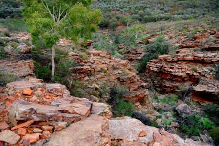 Gully ravine 1