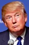 p2405 Donald Trump SM