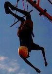 p2408 ASTC arts policy acrobat SM