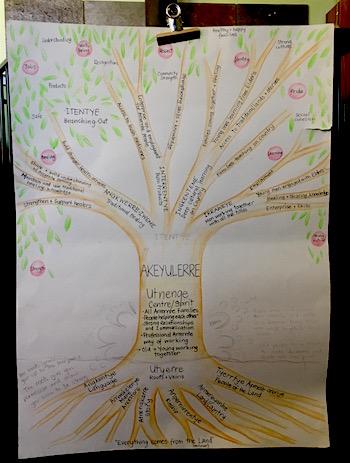 p2409 Akeyulerre tree 350