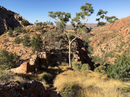 2468 Standley Chasm view 1 OK