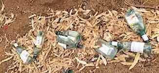 2486 Todd rubbish 1 SM