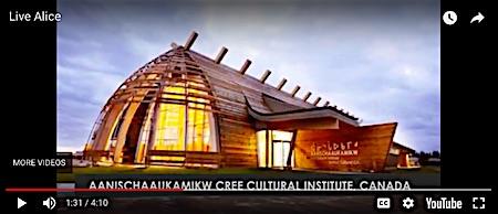 p2499g NIAG Cree Gallery