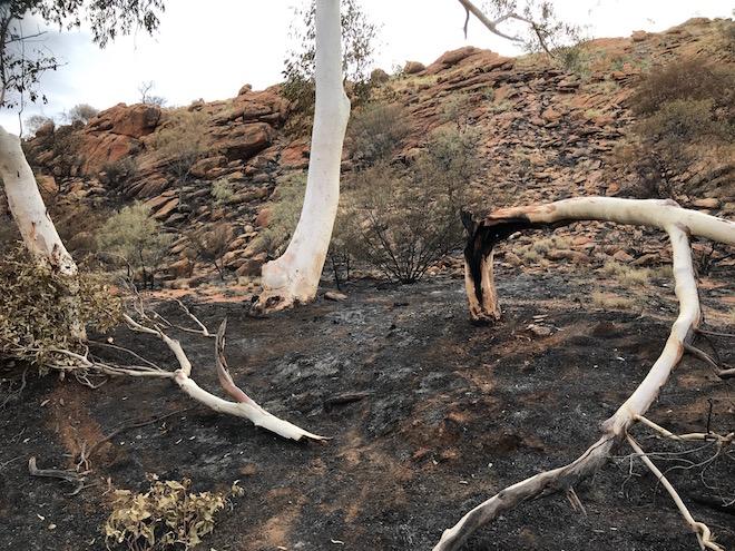 p2510 Fiona fire fallen