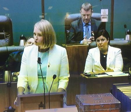 2534 Budget speech OK