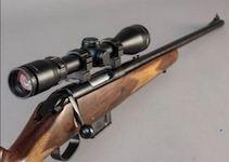 2542 rifle SM