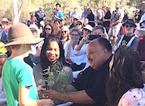 p2529 Reconciliation MLK flowers SM