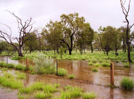 St Mary's Creek floodout, March 1, 2010 - AZRI boundary