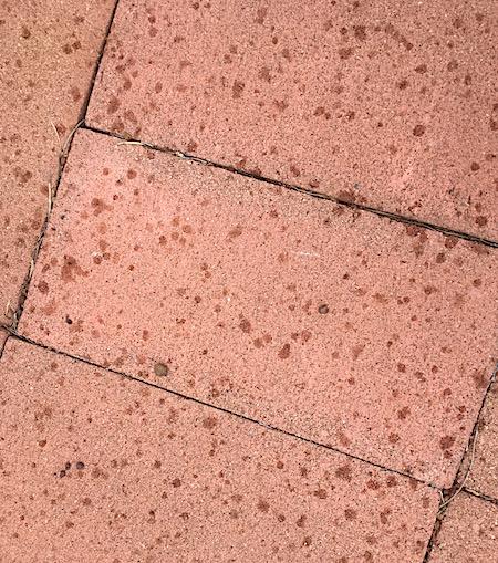 2583 raindrops 1