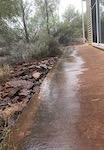 2583 raindrops 3 SM