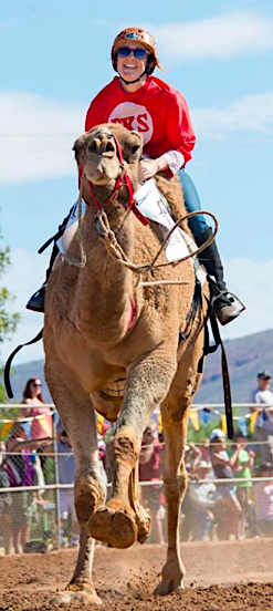 2585 Camel Cup 1