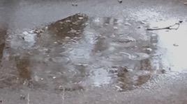 2588 rain SM