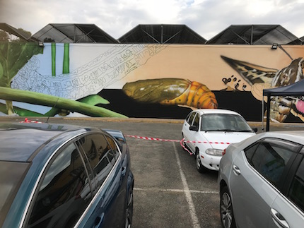 p2572 Yeperenye mural 3