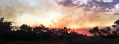 2601 bushfire SM