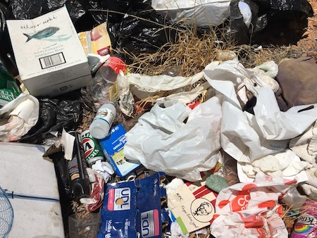 2629 found rubbish 3 OK