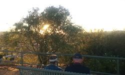 2637 sunset tree SM